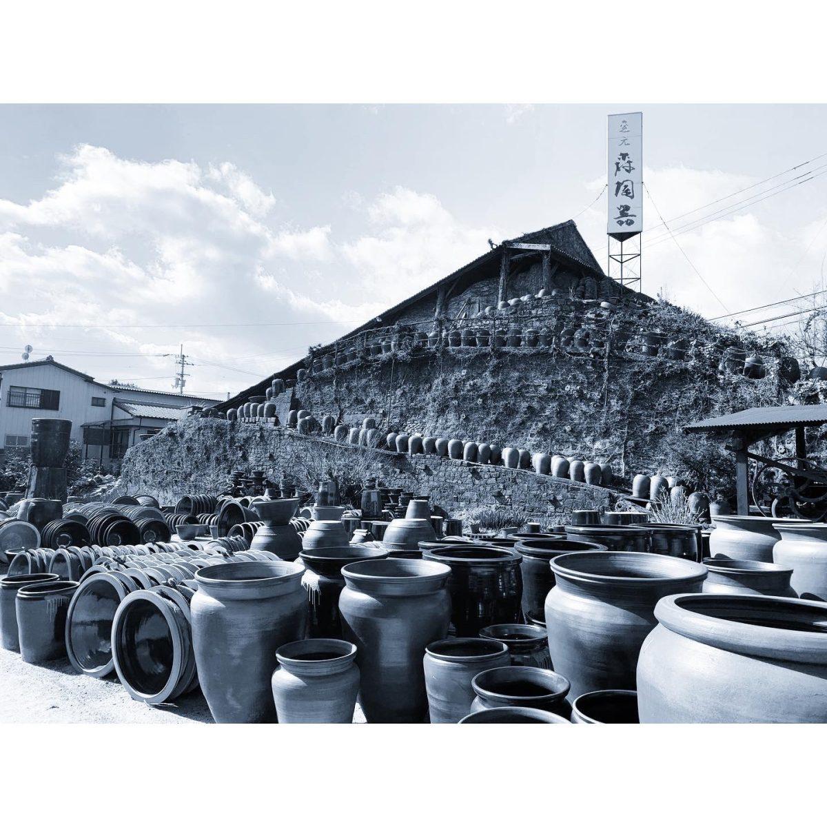 大谷焼/藍龜『森陶器』